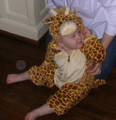 GiraffeCloseUp