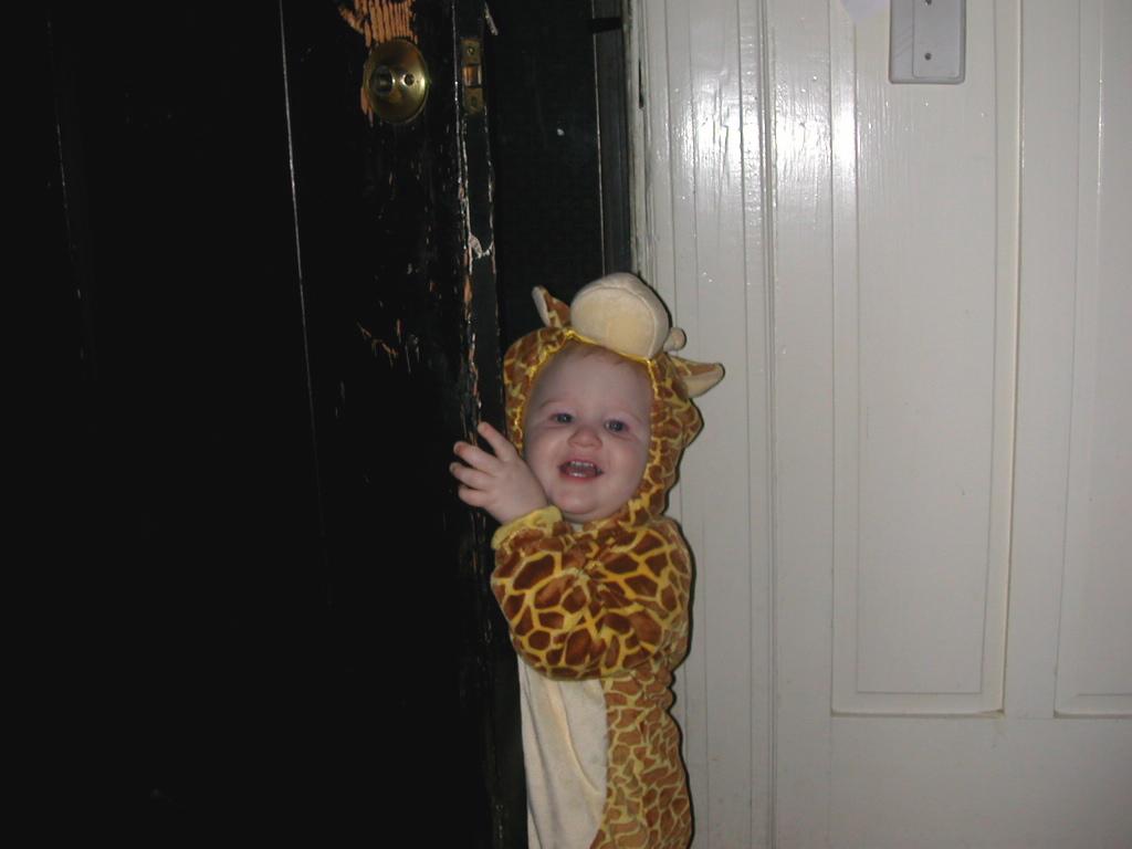 SmilingGiraffe